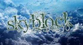 Concurso Skyblock IV