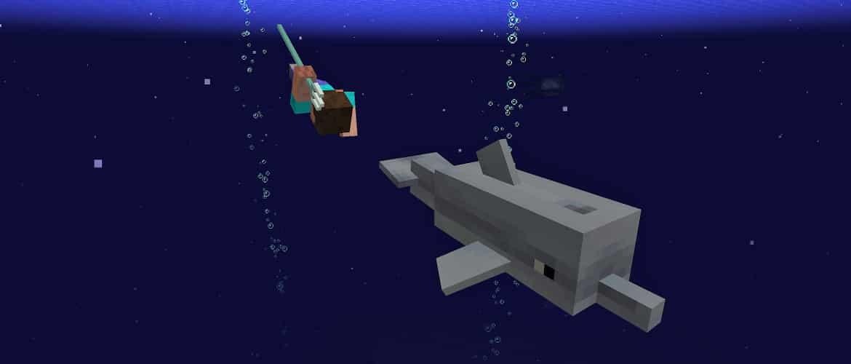 Jugados persiguiendo un delfín con su tridente