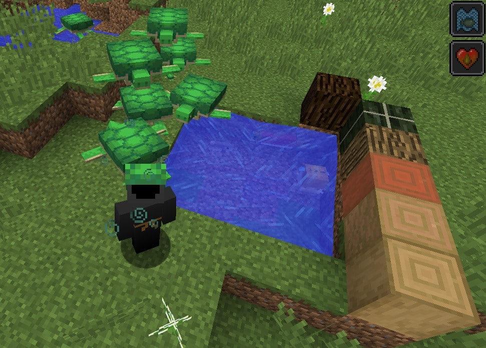 lxuser en la versión de minecraft 1.14, es evidente que no ve nada con ese casco de caparazón de tortuga :)