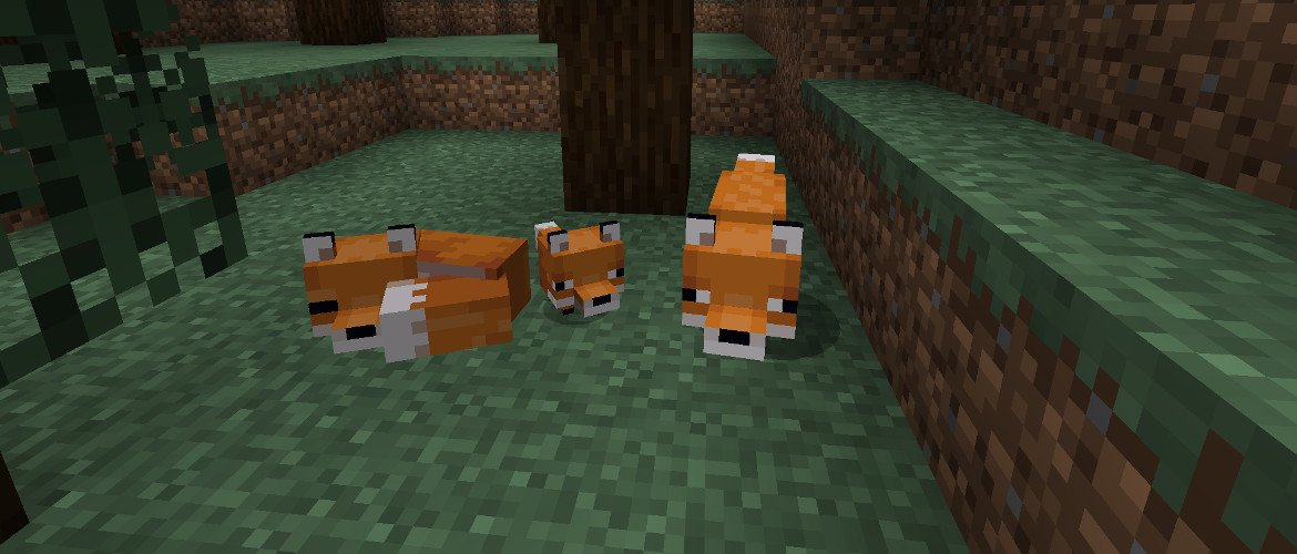 zorros de la version Minecraft 1.14